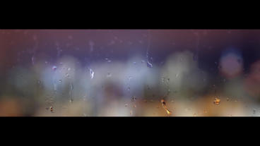 Misted Window and Rain After Effects Projekt