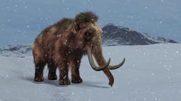 Woolly Mammoth animation Animation