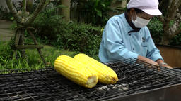 Thailand Pattaya 010 ravindra beach resort, grilled corn on the cob Footage