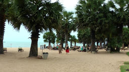 Thailand Pattaya 020 ravindra beach resort, wide sand area with palm trees Footage