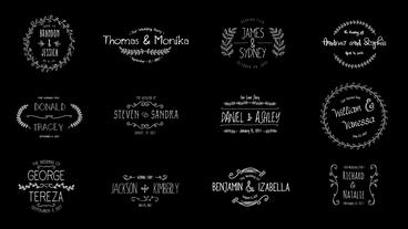 Wedding Floral Titles After Effects Projekt