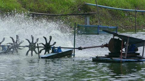 Water aeration turbine in farming aquatic Footage