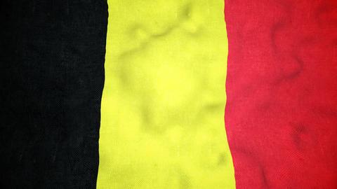 Belgian Flag Seamless Video Loop Animation