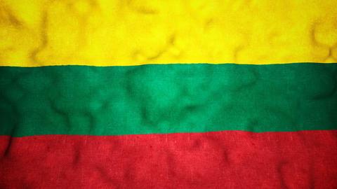 Lithuanian Flag Seamless Video Loop Animation
