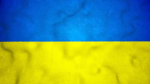 Ukrainian Flag Seamless Video Loop Animation