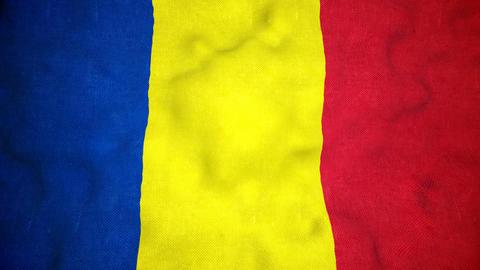 Romanian Flag Seamless Video Loop Animation