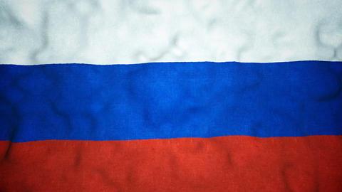 Russian Flag Seamless Video Loop Animation
