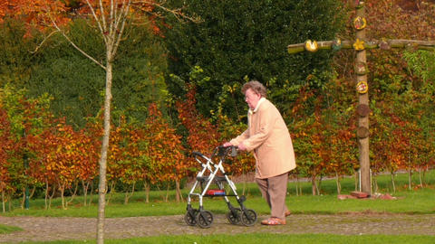 11831 pensioner wheel walker autumn park pan Footage
