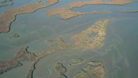 Aerial Flight Over the Swampy Shore at Low Tide Footage