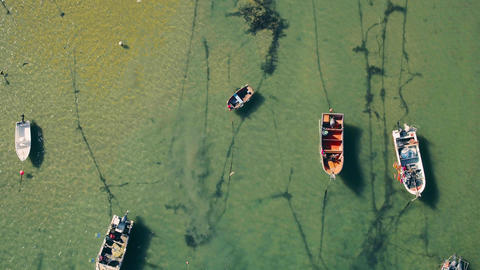 Aerial View Moored Fishing Boats in Harbor Footage