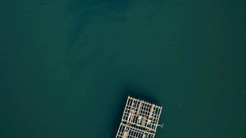Aerial View of Farm on Cultivation of Seashells Footage