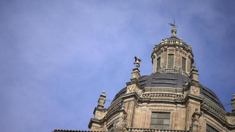 Stork and doves on the tower in Salamanca ビデオ