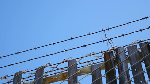 Four videos of barbed wire in 4K-professional electronic slider Footage