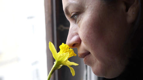 Woman at Window Smelling Daffodil Handheld Stock Video Footage
