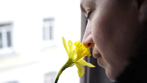 Woman at Window Smelling Daffodil Handheld Footage