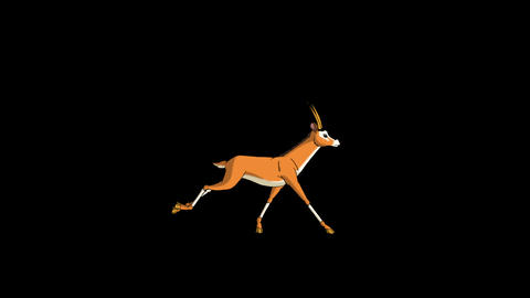 Gazelle Antelope Runs. Animated Motion Graphic with Alpha Channel Animation