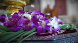 Flowers placed as buddhist shrine offerings Footage