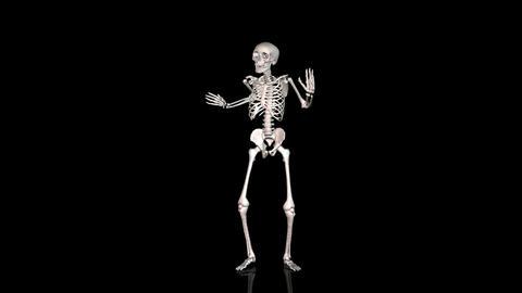 Skeleton Disco Dancing - White- Reflecting Ground - CGI Stock Video Footage