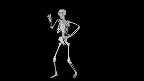 Skeleton Disco Dancing - Zoom Out + Alpha CGI Animation