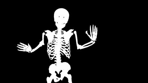 Skeleton Disco Dancing - Zoom Out + Alpha CGI Stock Video Footage