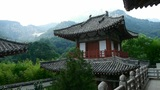 China ancient temple architecture in forest,bamboo mountain hill Footage