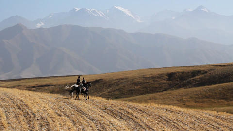 The Horsecar in mountain Stock Video Footage