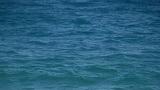 sea waves 01 Footage