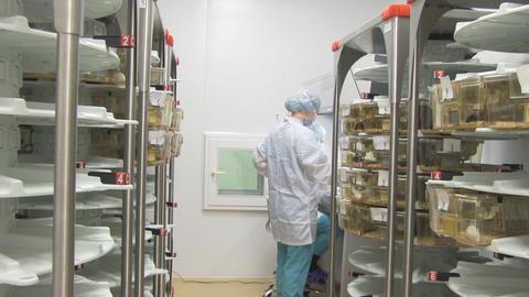 scientific center Stock Video Footage