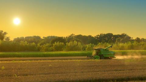 10719 combine harvester on rye field Stock Video Footage