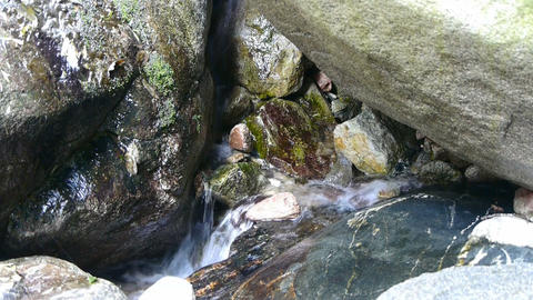 river stream inlets over stones,spring Footage