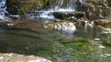 river stream on mountain valley Footage