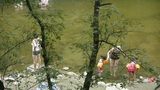 People swimming in lake,mother teach children to swim,dense forests Footage