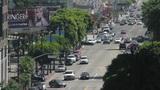 20110813 VINE 4591 Footage