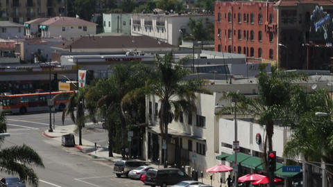 20110813 YUCCA 03 4586 Stock Video Footage