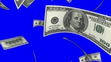 Falling Dollars (Loop On Blue Screen) stock footage