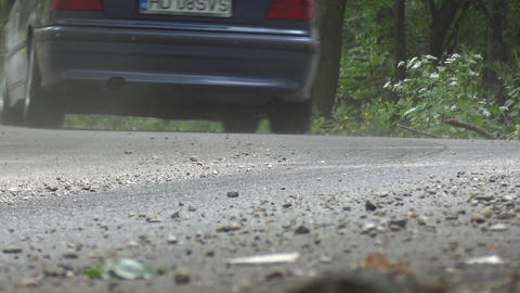 Car that runs through the green forest turning left 18 Footage