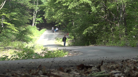 Group of people walking through dense green forest and on a paved road 22a Footage