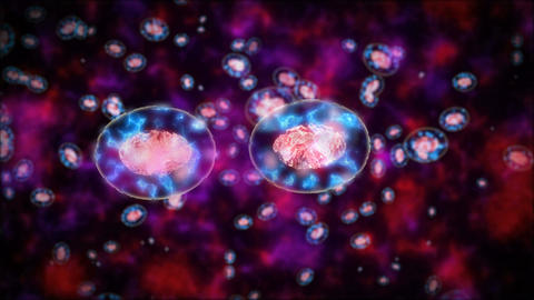 Abstract Cells or bacterias division Animation