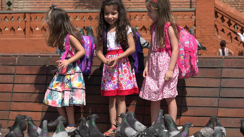 School Children Feeding Pigeons Live Action