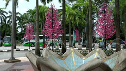 Malaysia Kuala Lumpur 032 exotic pink trees and fountain in downtown Footage