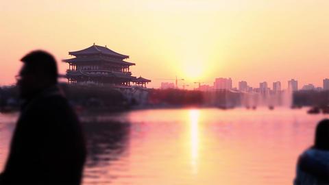 Chinese Park Lake Sunset - Timelapse Footage