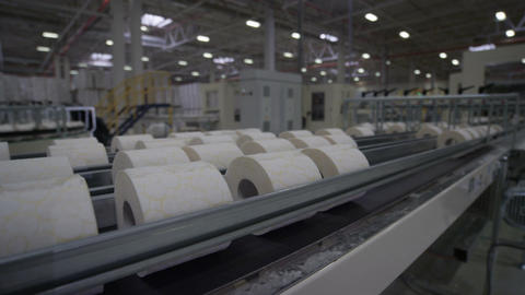 Motion of Long Toilet Paper Conveyor in Manufacturing Process Footage