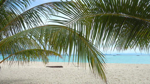 Palm leaves and white sand tropical beach Footage