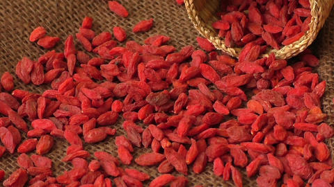 Dried goji berries. Lycium chinense Footage