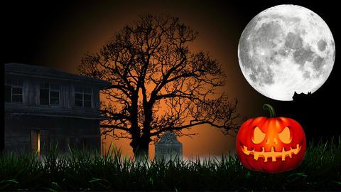 Halloween animation: cartoon intro Animation