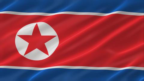 Flag of North Korea 4K Animation