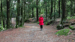 woman walking alone forest red coat overcoat calm serene enjoying tranquil peace Footage