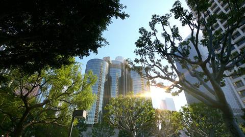 Video of skyscraper in Los Angeles in 4K Footage