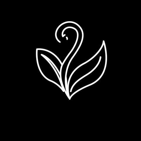 Plant Animation