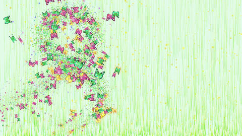 Animation colored butterflies for womens day design Animation